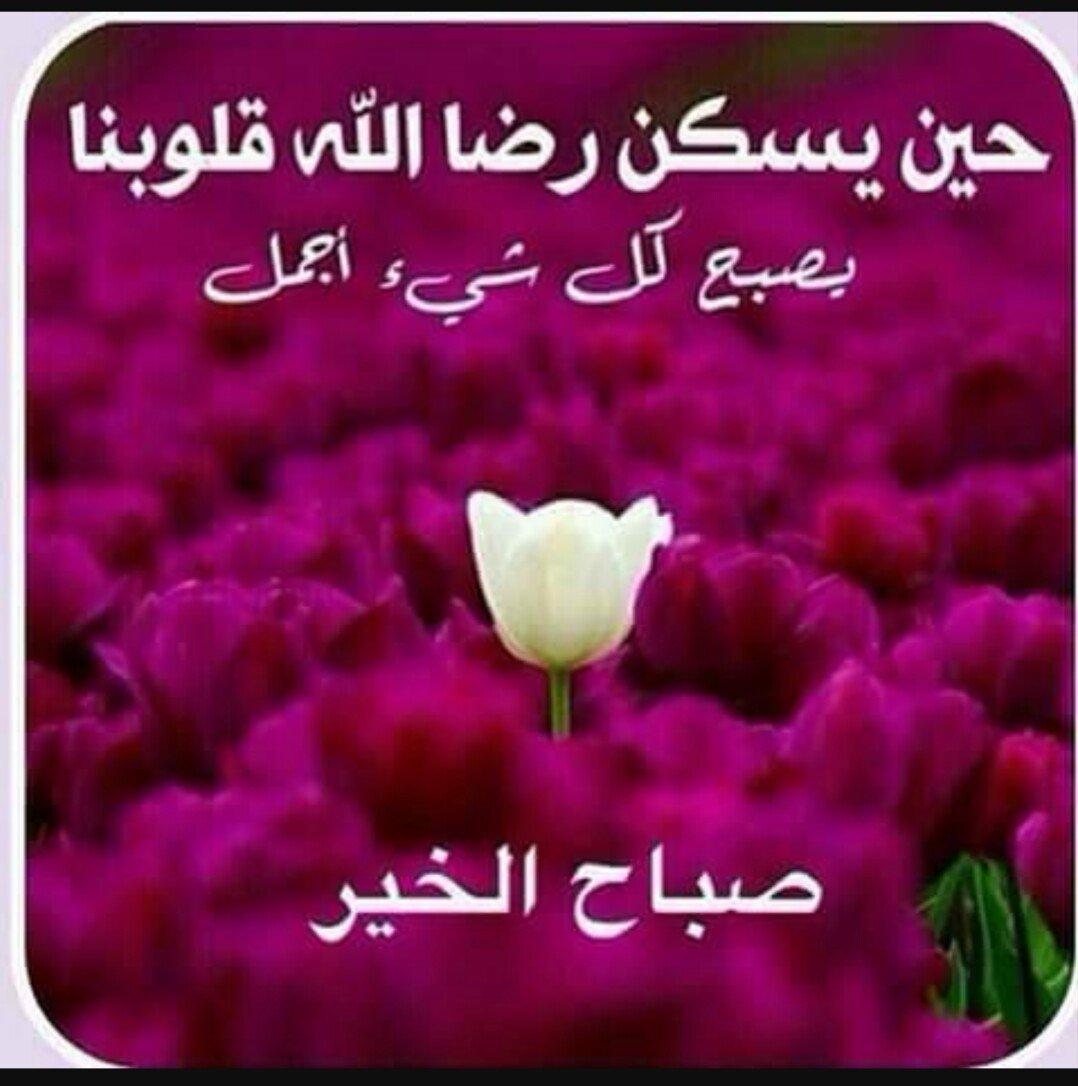 صورة صور مكتوب عليها صباح ومساء الخير , احلى مكتوب للمساء و للصباح 3269 5