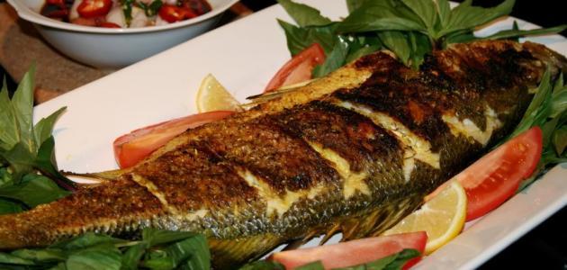 صور فوائد السمك المشوي , فائده السمك لا حصر لها
