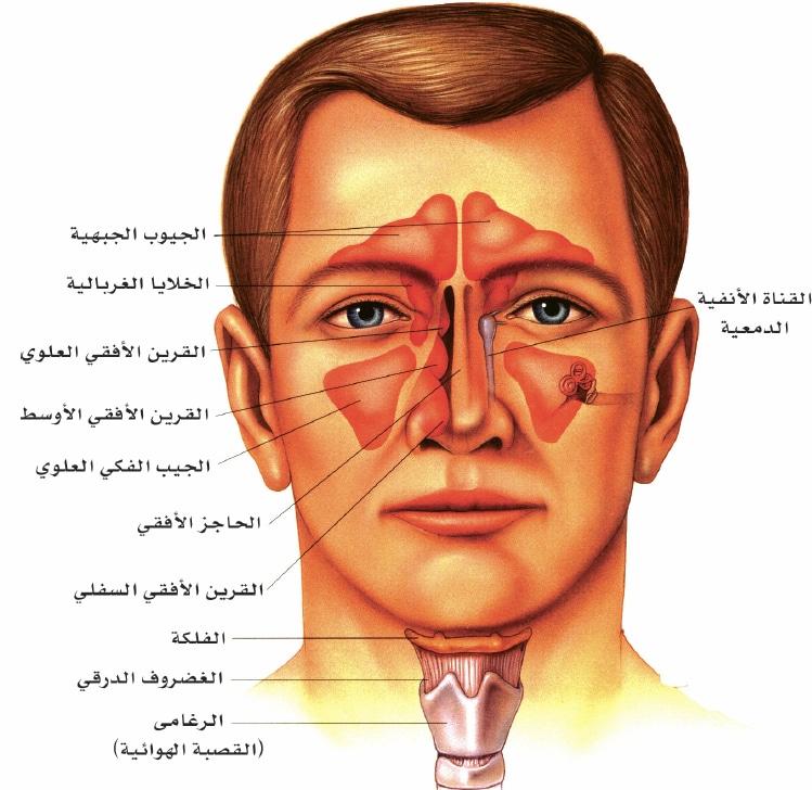 صورة اعراض الجيوب الانفية على العيون , اثار التهاب الانف الحاد على العين