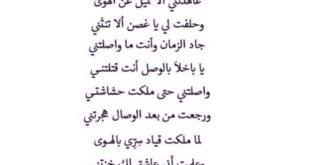 اجمل شعر عراقي , الفخر بحب العراق في الشعر