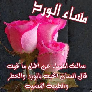 صورة صور مكتوب فيه مساء الخير , مساء الورد علي عيونك