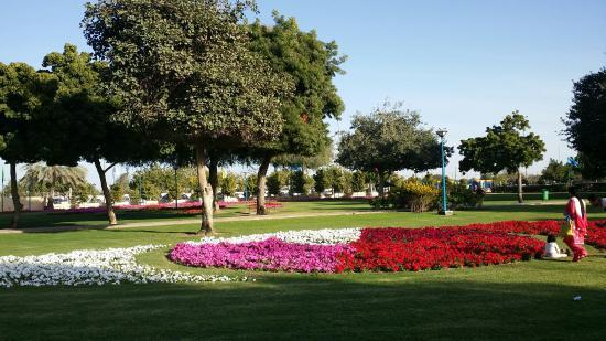 صورة افضل منتزهات الطائف , المنتزهات المميزه في مدينه الطائف التي تستاهل الزياره
