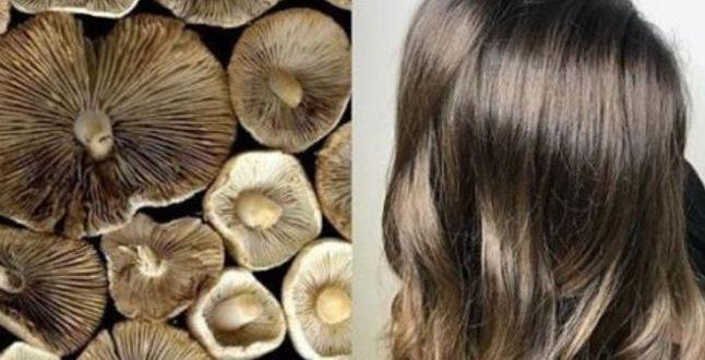 صورة الوان صبغة شعر 2019 , تالقى بجمال شعرك مع احلى الوان