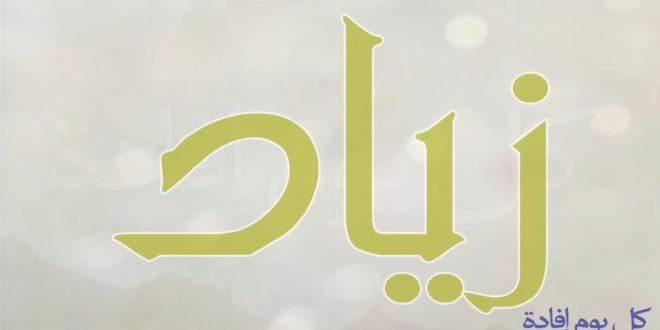 صورة معنى اسم ذياد , من المعاجم العربيه معنى اسم زياد