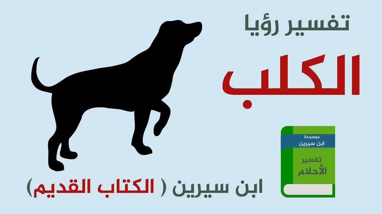 صورة تفسير الاحلام رؤية الكلاب , رايت فى منامى كلبا