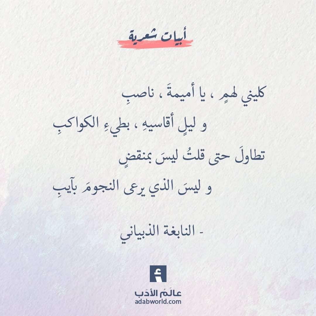 صورة اجمل ماقيل في الشعر , شعر الجاهليه من اروع كلمات الشعر