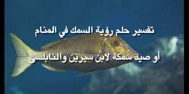 صورة تفسير حلم السمك لابن سيرين , السمك في المنام للمراه المتزوجه