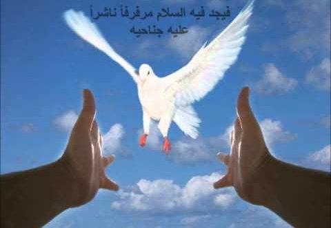 صورة حكمه ومثل عن السلام , السلام في القرن الماضي والحاضر
