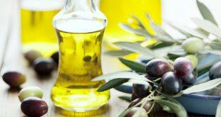 صورة فوائد دهن الثدي بزيت الزيتون , فوائد زيت الزيتون للثدي