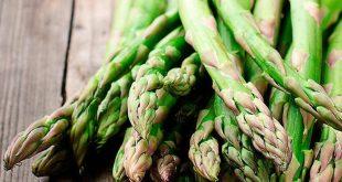 صور فوائد نبات الهليون , تعرف علي اسرار الهليون