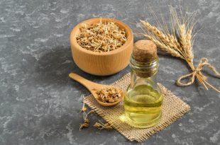 صورة فوائد جنين القمح للبشرة , افيد المحاصيل للبشرة