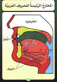 صورة مخارج الحروف في التجويد , تعلم علم التجويد ومخارج الحروف العربية الصحيحة