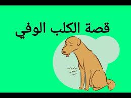 صورة قصة الكلب الوفي , عندما يصبح الكلب اكثر وفاءا من بعض البشر
