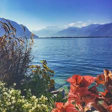 صورة هي اعلى بحيرة في العالم تقع بين بيرو و بوليفيا , بحيرة تيتيكاكا وشهرتها حول العالم تعرف عليها