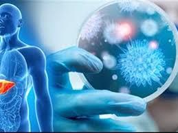 صورة هل فيروس سي معدي , تجنب الاصابة به من خلال معرفة طرق انتشاره
