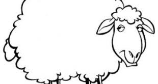 رسمة خروف للتلوين